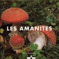 amanites